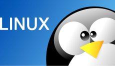 Linux Server Disk Nasıl Genişletilir ?