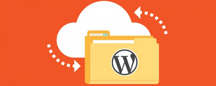 WordPress Web Sayfası Yedekleme
