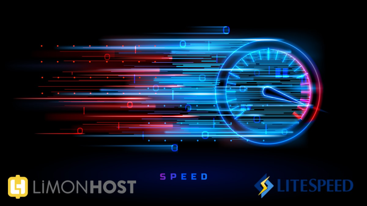 litespeed web server nedir